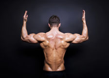 Muscular male back on black background. Muscular, male back on black background Royalty Free Stock Images