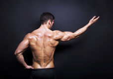 Muscular male back on black background Stock Images