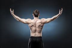 Muscular male back  on dark blue background Stock Photo