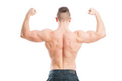 Muscular male from the back Royalty Free Stock Images