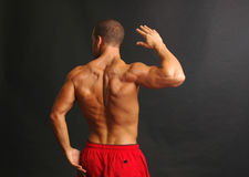 Muscular male back in red shorts. Handsome male model showing his muscular back he's wearing red swim trunks and arms are flexed Stock Photography
