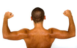 Muscular male bare back Royalty Free Stock Image