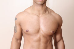 Muscular male body Royalty Free Stock Image