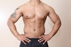 Muscular male body Stock Images