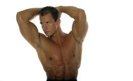 Muscular male body builder. Posing stock image