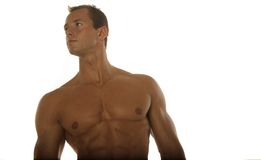 Muscular male body builder. Posing stock photography