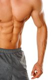 Muscular male body isolated on white Royalty Free Stock Photo