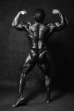 Muscular male Bodybuilder posing in studio royalty free stock photography