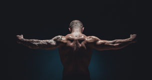 Muscular male Bodybuilder Stock Photography