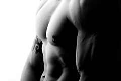 Muscular male chest Royalty Free Stock Image