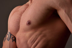 Muscular male chest. Side view with directional lighting Stock Photo