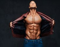 Muscular male dressed in a jacket and jeans. Studio portrait of shirtless muscular male dressed in a jeans and a leather jacket on naked torso over grey Stock Photos