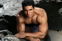Muscular male fitness model Stock Images