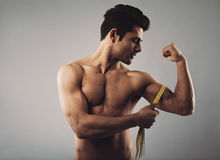 Muscular male measuring biceps. Fitness man measuring his body. Muscular male measuring biceps by tape measure isolated on grey background royalty free stock image