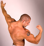 The  Muscular male model Royalty Free Stock Photos