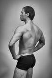 Muscular male model posing. Royalty Free Stock Image