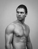 Muscular male model. Stock Photography