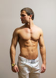 Muscular male model. Stock Image