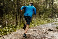 Muscular male runner. Fast running forest trail in rain Royalty Free Stock Image