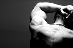 Muscular male shoulder back. Muscular male shoulder and back in black and white Stock Image