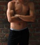 Muscular male torso Stock Photo