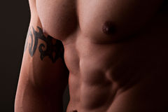 Muscular male torso. Muscular male chest and abdomen closeup with directional lighting and dark background Royalty Free Stock Image