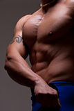 Muscular male torso. Side-view of muscular male torso and arm with tattoo Royalty Free Stock Image