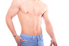 Muscular male torso. Isolated on white Stock Image