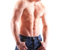 Muscular male torso. Isolated on white Royalty Free Stock Photography