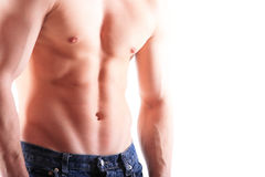 Muscular male torso. Isolated on white Stock Photos