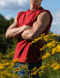 Muscular Male Torso. A muscular male torso on a meadow Stock Image