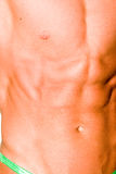 Muscular male torso. A muscular male torso detail Stock Photo