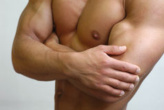 Muscular Male Torso Stock Image