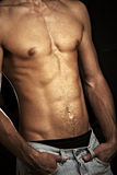 Muscular male torso. On a black background Royalty Free Stock Photo