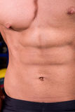 Muscular male torso. In the gym Royalty Free Stock Image