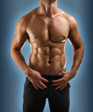 Muscular male torso close up Royalty Free Stock Photo