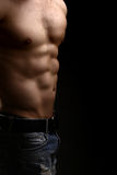 Muscular male torso. Closeup view of one handsome sexual strong young male bare chest of muscular body standing posing on studio background, vertical picture Stock Photography