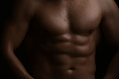 Muscular male torso. Closeup view of one handsome sexual strong young male bare chest of muscular body standing posing on studio background, horizontal picture Stock Image