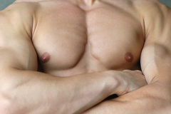 Muscular male torso. With crossed arms Stock Photos