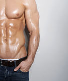 Muscular male torso. On grey background Royalty Free Stock Photo