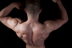 Muscular male torso. Isolated on black Stock Photography