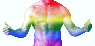 Muscular male torso and rainbow colors for gay pride Stock Images