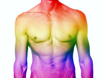 Muscular male torso with rainbow colors for gay pride Stock Images
