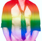 Muscular male torso and rainbow colors for gay pride Royalty Free Stock Photo