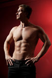 Muscular male torso. relief. Stock Images