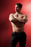 Muscular male torso. relief. Royalty Free Stock Image