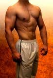 Muscular male torso showing muscle detail, orange background. Men royalty free stock photos