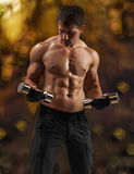 A muscular male training Royalty Free Stock Images