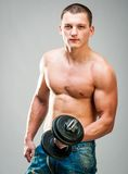Muscular man Stock Images