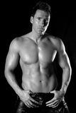 Muscular man. Black and white portrait of a sexy muscular man looking at the camera. Black background Stock Photography